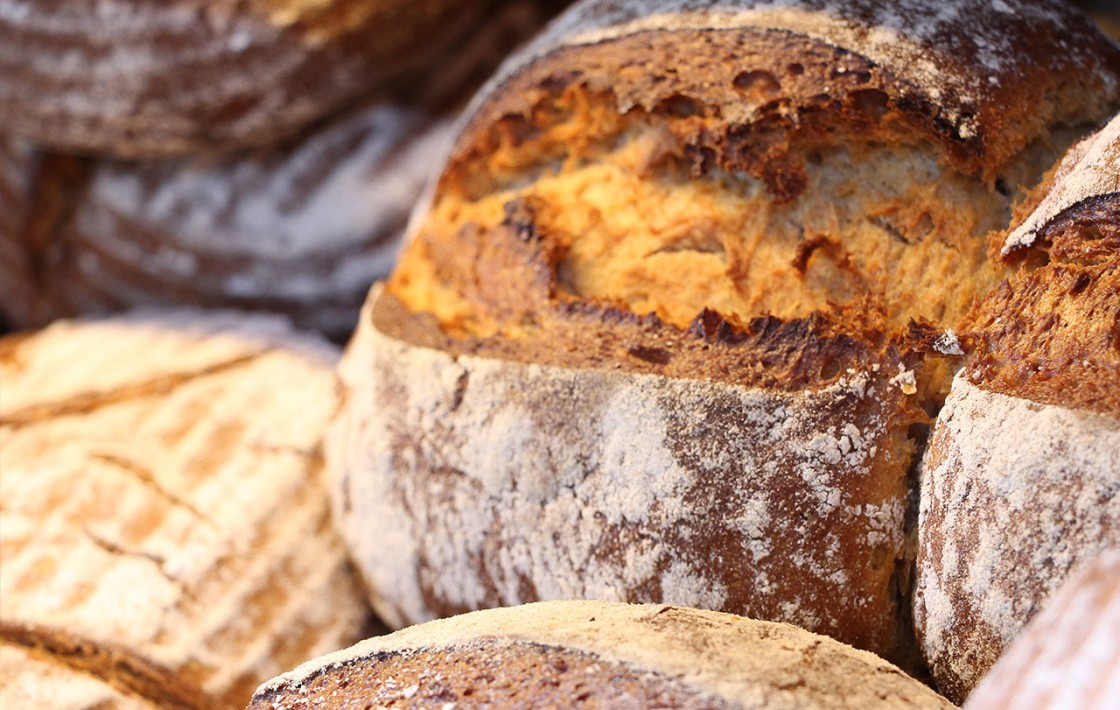 Frische Brötchen von der Hofbäckerei