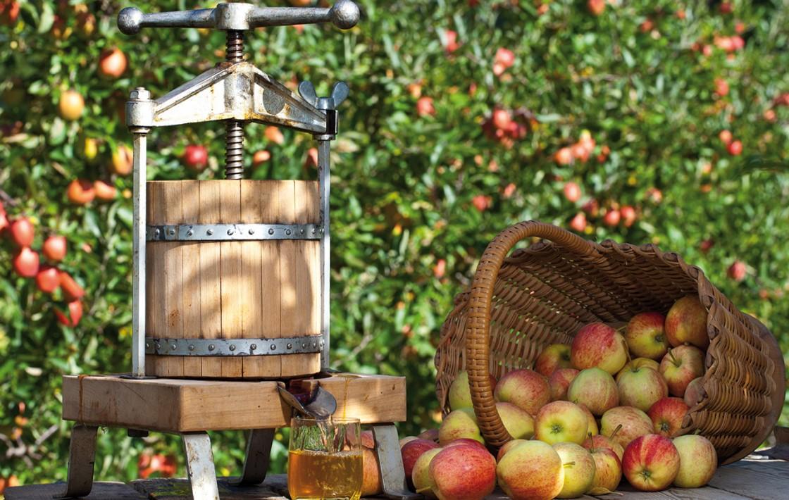 Apfelpresse